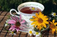 Picture of Echinacea tea