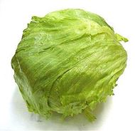 Picture of Head lettuce seeds