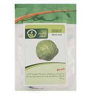Picture of Pakan Bazr Cabbage Seeds