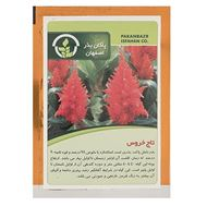 Picture of Pakan Bazr Amaranth Flower Seeds
