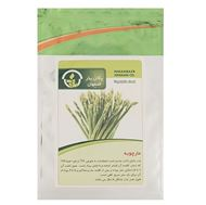 Picture of Pakan Bazr Garden Asparagus Seeds