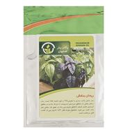 Picture of Pakan Bazr Purple Basil Seeds