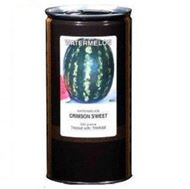 Picture of Canyon crimson sweet watermelon seeds